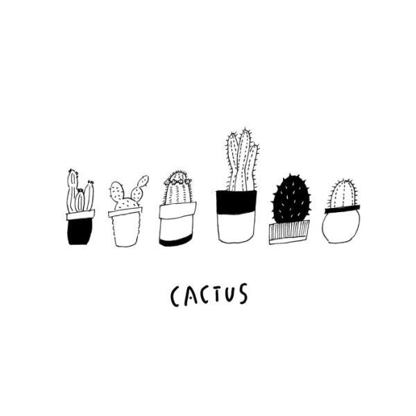 cactus_illust