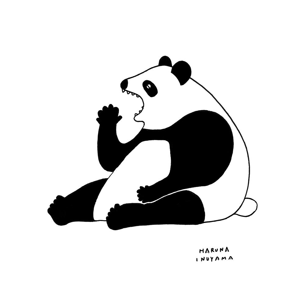 Panda yawn